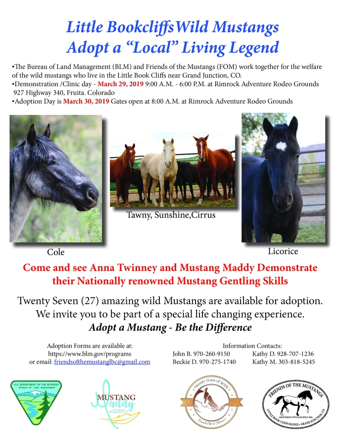 March Adoption Poster
